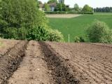 Landbruket og EØS