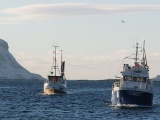 Hjemfall av kvoter sikrer kysten?
